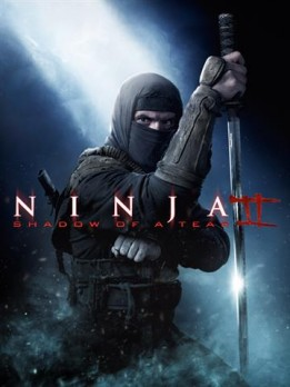 Ninja 2 - shadow of a tear