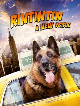 Rintintin à new york